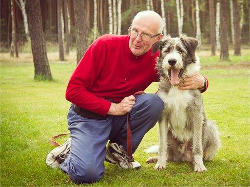 Pozytywne szkolenia psów Warszawa
