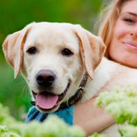 pozytywne szkolenie psa Warszawa